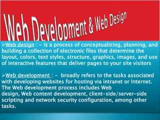 Web Development and Web Design Company In Delhi NCR