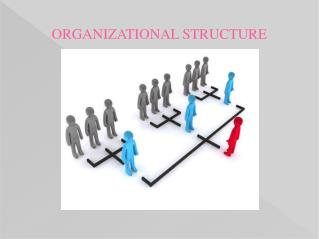 PPT on Organizational Structure by Experienced Writers