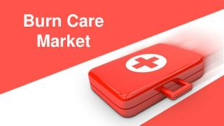Burn Care Market