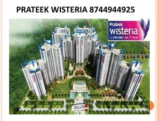 Prateek wisteria 8744944925