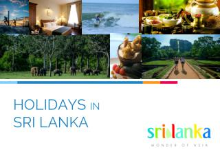 What you need to know about Sri Lanka Tours