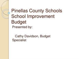 Pinellas County Schools School Improvement Budget