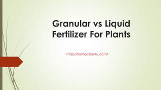 Granular vs Liquid Fertilizer For Plants