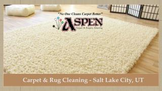 Carpet & Rug Cleaning - Salt Lake City, UT