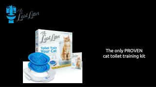 automatic kitty litter box
