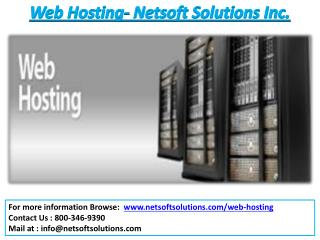 Web Hosting Services - Netsoft Solutions Inc.