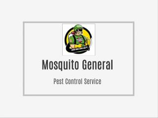 Mosquito General
