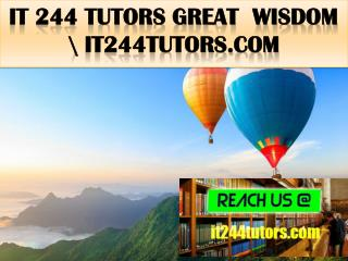 IT 244 TUTORS Great  Wisdom \ it244tutors.com