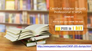 Passin1day CWSP-205 Exam Dumps
