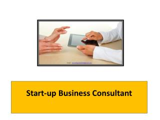 Start-up Business Consultant