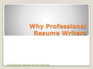 The professional resume writers