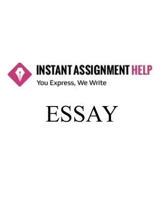 Essay Sample on Coaching Philosophy