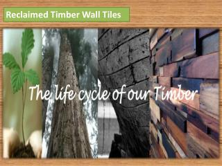 Reclaimed Timber Wall Tiles