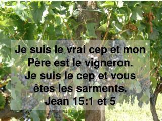 Je suis le vrai cep et mon P re est le vigneron. Je suis le cep et vous  tes les sarments. Jean 15:1 et 5