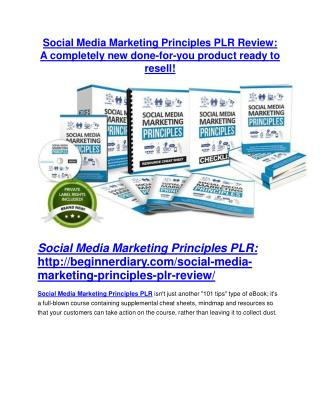Social Media Marketing Principles PLR review - I was shocked!
