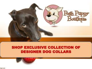 SHOP EXCLUSIVE COLLECTION OF  DESIGNER DOG COLLARS-POSH PUPPY BOUTIQUE