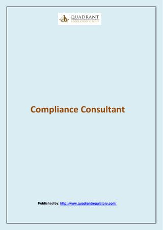 Compliance Consultant