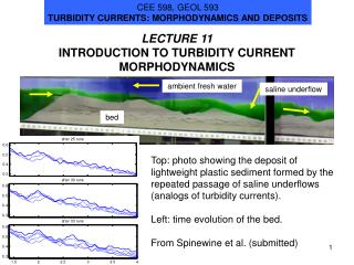 LECTURE 11 INTRODUCTION TO TURBIDITY CURRENT MORPHODYNAMICS