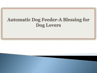 Automatic Dog Feeder-A Blessing for Dog Lovers