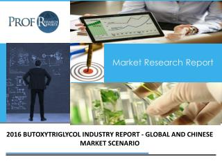 Butoxytriglycol Industry, 2011-2021 Market Research