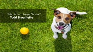 Todd Brouillette – How to Raise a Jack Russell Terrier
