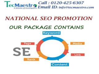 Top SEO Promotion Services Nation wide by TecMaestro