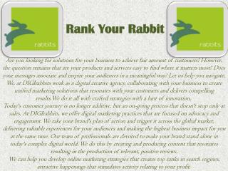 Knowledgest Digital Markeing Service in Kolkata | Rank Your Rabbit