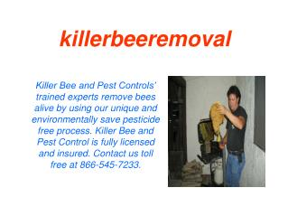 Killer bee live removal Rancho Mirage CA