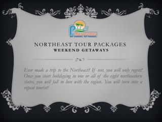 Pii India Tour & Travels Northest