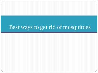 Mosquito net manufacturers Coimbatore | Erode | Tirupur