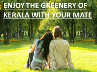 Enjoy the beautiful greenery of Kerala