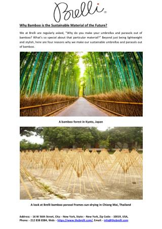 Why Bamboo is the Sustainable Material of the Future