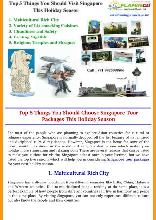 Top 5 Things You Should Choose Singapore Tour Packages This Holiday Season