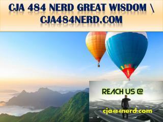 CJA 484 NERD GREAT WISDOM \ cja484nerd.com
