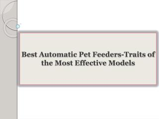 Best Automatic Pet Feeders-Traits of the Most Effective Models