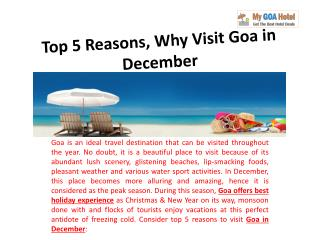 Top 5 Reasons, Why Visit Goa in December