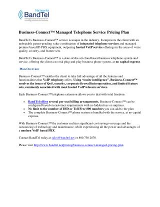 Business-Connect™ Managed Telephone Service Pricing Plan