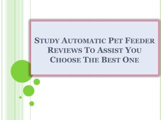 Study Automatic Pet Feeder Reviews To Assist You Choose The Best One