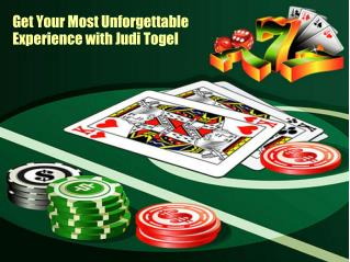 Get Your Most Unforgettable Experience with Judi Togel