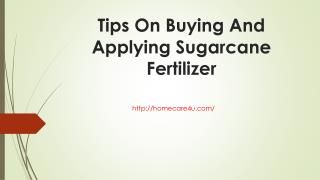 Tips On Buying And Applying Sugarcane Fertilizer