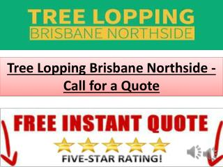 Tree Lopping Brisbane Northside - Call for a Quote