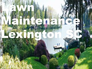 Lawn Maintenance Lexington SC In The Best Way