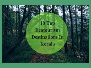10 Top Ecotourism Destinations In Kerala