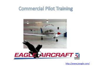 Commercial Pilot Training