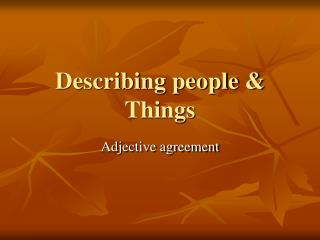 Describing people  Things