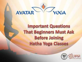 Important Questions That Beginners Must Ask Before Joining Hatha Yoga Classes