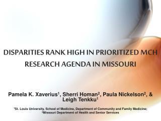 DISPARITIES RANK HIGH IN PRIORITIZED MCH RESEARCH AGENDA IN MISSOURI