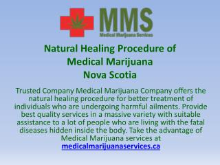 Natural Healing Procedure of Medical Marijuana Nova Scotia