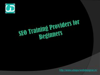 SEO Training Providers for Beginners