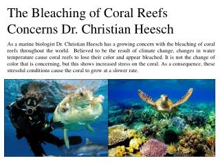 The bleaching of coral reefs concerns dr christian heesch